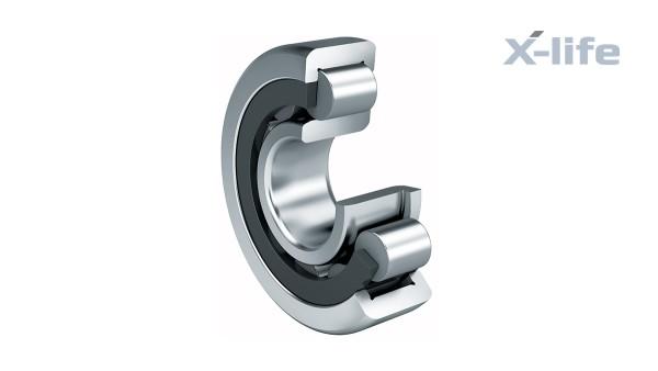 Cuscinetti volventi e cuscinetti a strisciamento Schaeffler: Cuscinetti radiali a rulli cilindrici con gabbia