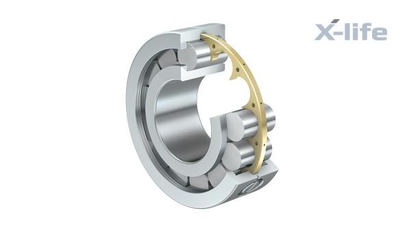 Cuscinetti volventi e cuscinetti a strisciamento Schaeffler: Cuscinetti radiali a rulli cilindrici ad attrito ridotto
