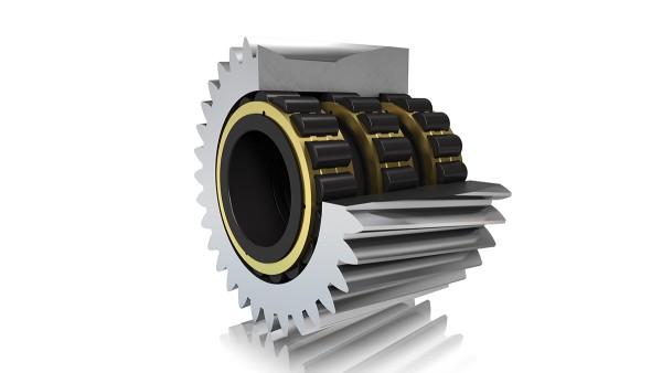 Cuscinetti a rulli cilindrici FAG (supporto diretto)
