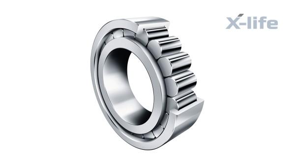 Cuscinetti volventi e cuscinetti a strisciamento Schaeffler: Cuscinetti radiali a rulli cilindrici a pieno riempimento